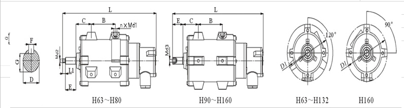 YBF2-100L1-4型号电机安装和尺寸与外形尺寸图1