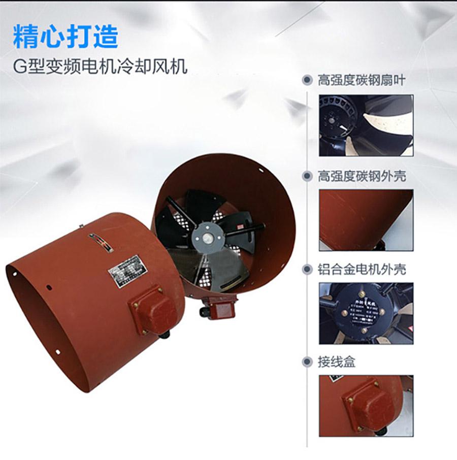 G-100A电机技术特点/使用条件/代号说明图2
